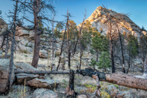 Greyrock Hike in Fort Collins, CO