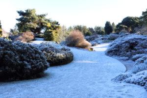 Denver Gardens